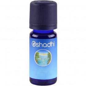 Oshadhi – Huile essentielle 10 ml – Basilic doux